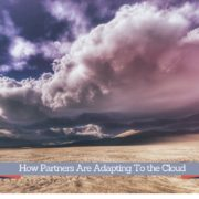 How Partners Are Adapting to the Cloud