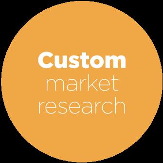 Custom Market Research at Cascade Insights